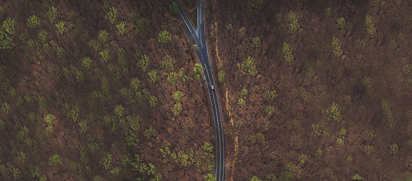 Header image of a forked road