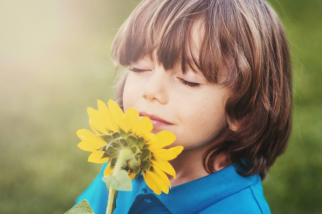Boy and sunflower - refresh your R&D projects