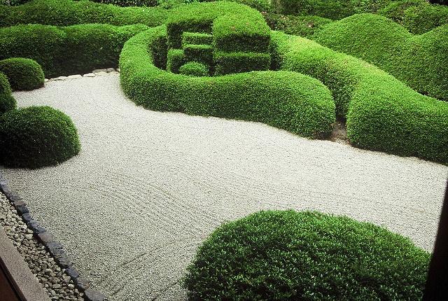 Garden_Patent_Pruning.jpg