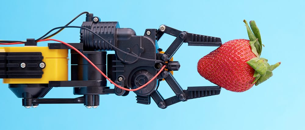 An image of a robotic hand holding a strawberry